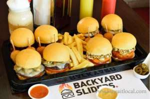 Backyard Sliders  in kuwait