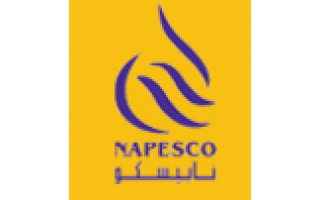 National Petroleum Services Company K S C C  (NAPESCO