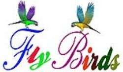 fly-birds-playschool-mangaf-kuwait