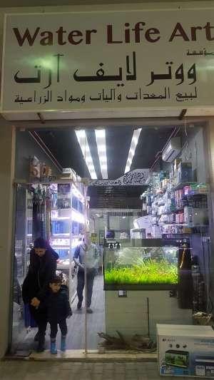 water-life-art-aquarium-kuwait