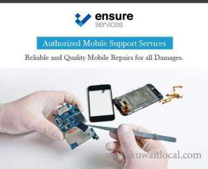 ensure-computer-service-company-hawally-kuwait