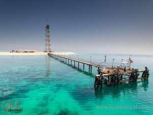 qarooh-island-kuwait