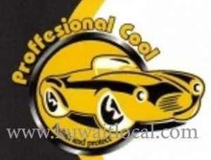 professional-cool-shuwaikh-kuwait