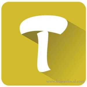 tayseer-trading-company-kuwait