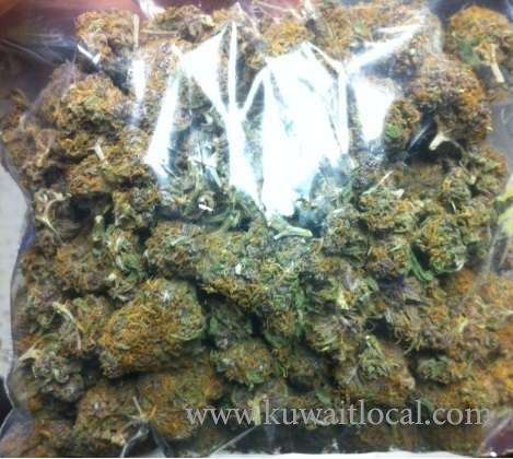 face2face-mary-jane-delivery-in-kuwait-kuwait
