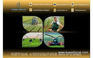 agriculture-manpower-from-vietnam-kuwait