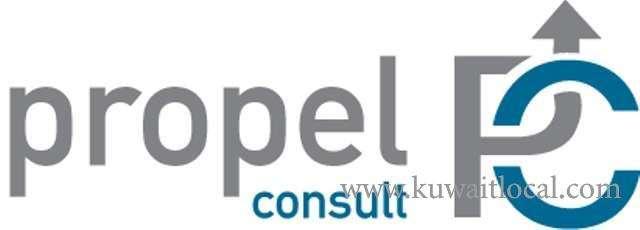 deputy-structural-design-manager-1-kuwait