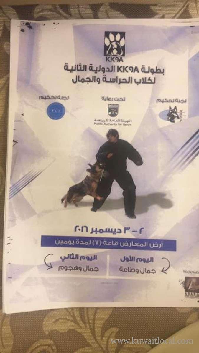 2nd-kk9a-dogs-show-2016-kuwait