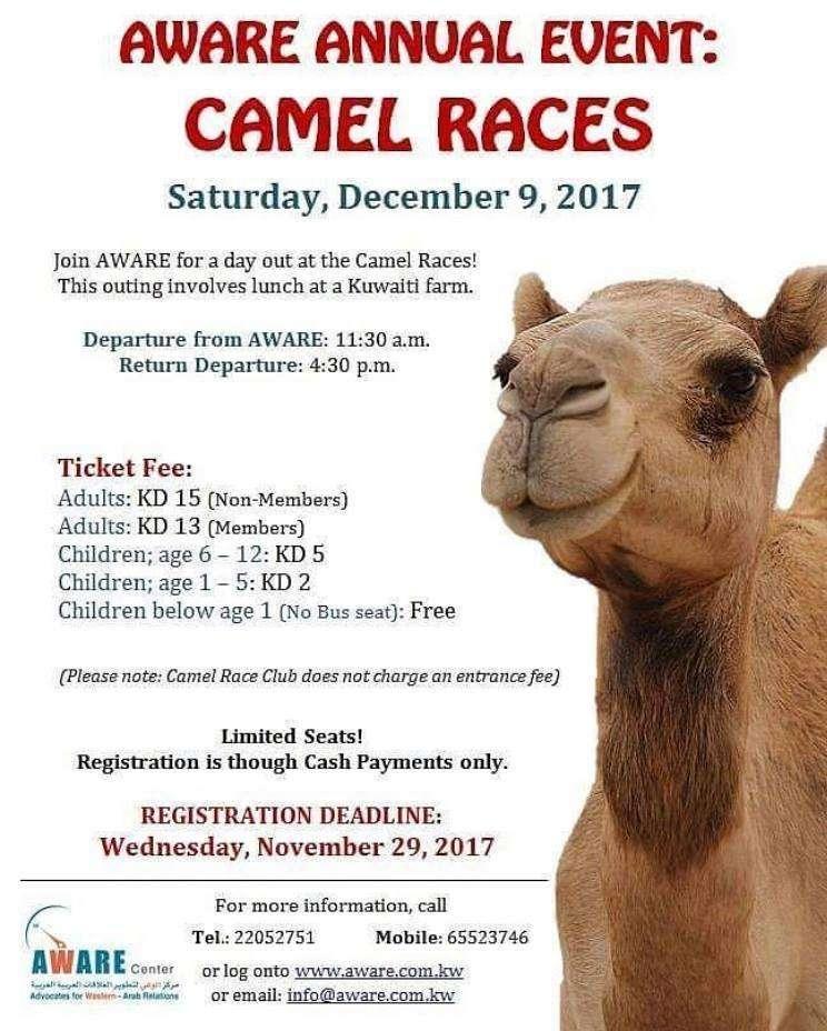 camel-races-kuwait