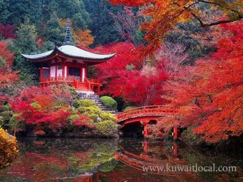 free-japanese-language-course-founded-by-nomura-kuwait