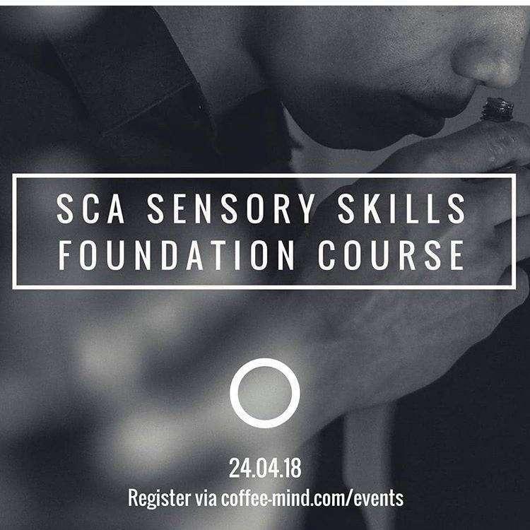 sca-sensory-skills-kuwait