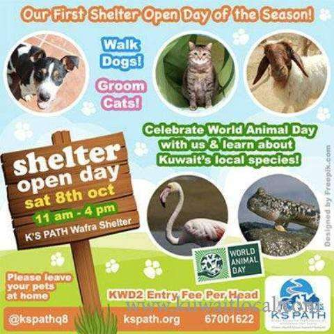 shelter-open-day-kuwait