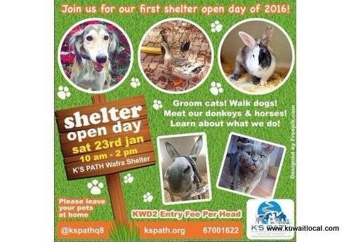 shelter-open-day-|-events-in-kuwait-kuwait