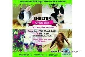 shelter-open-day-at-kspath_kuwait
