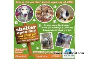 shelter-open-day-|-events-in-kuwait_kuwait