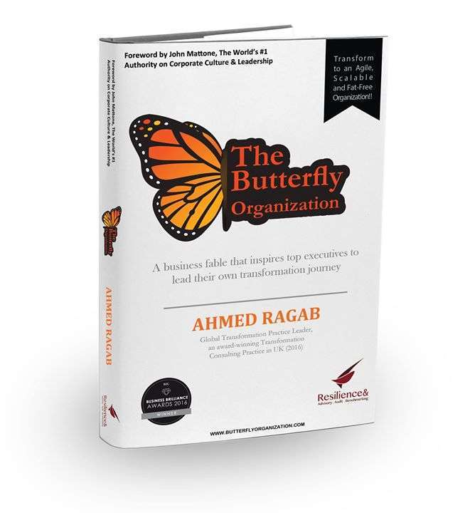 the-butterfly-organization-in-project-management-kuwait