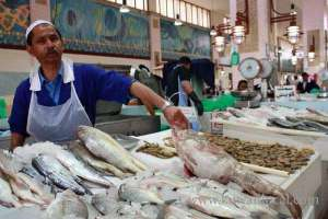 fish-in-local-market-safe-for-consumption_kuwait