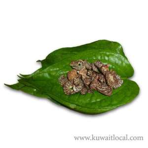 asian--arrested--for-smuggling-betel-leaves_kuwait