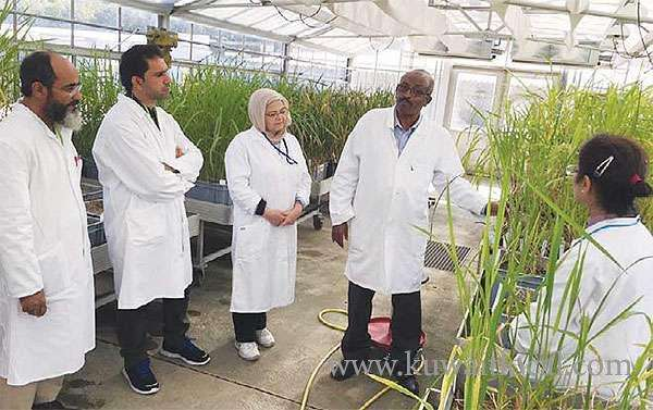 kuwaiti-scientists-study-minimizing-climate-adverse-impact-on-agriculture_kuwait