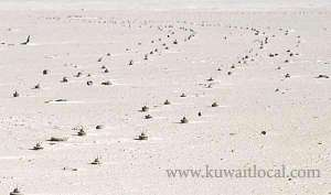 moi-refutes-claims-of-mines-presence_kuwait