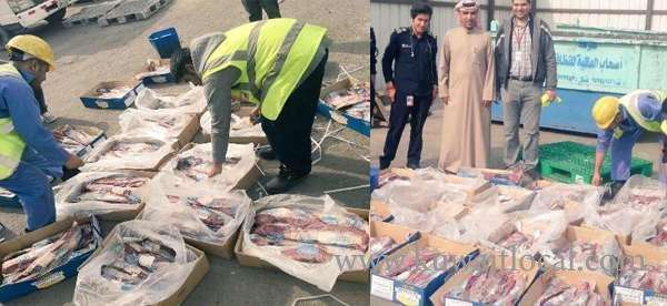 3,466-kgs-of-beef-destroyed_kuwait