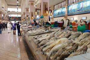 ministry-move-to-cause-chaos-in-fish-market,-drive-away-exporters_kuwait