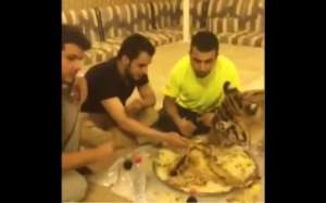 tiger-and-friends--eating-biryani-_kuwait