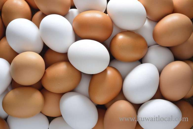 paaafr-is-not-responsible-for-lack-of-supply-of-eggs-in-the-local-market_kuwait
