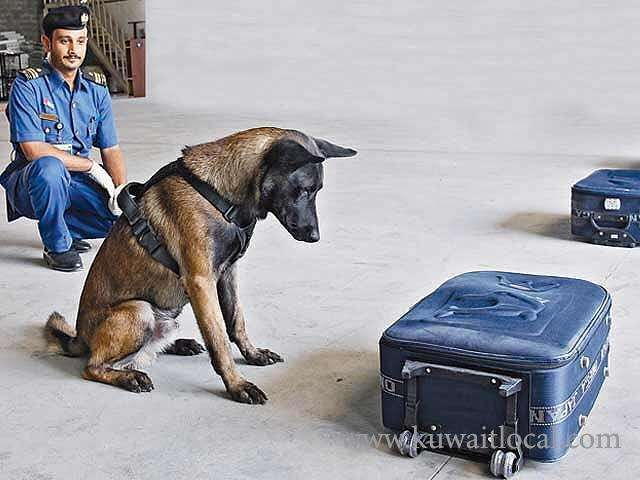 crime-news-kuwait-customs-dogs-fail-to-detect-all-types-of-drugs_kuwait