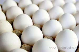 egg-crisis-lingers--some-countries-prevent-the-import-of-kuwaiti-eggs-for-certain-reasons_kuwait