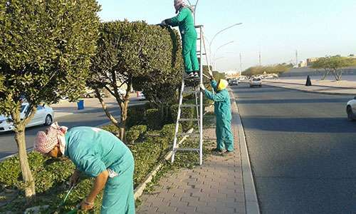 new-contracts-to-beautify-kuwait---paaf_kuwait