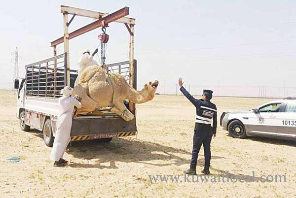 deportation-for-violators-of-environmental-law_kuwait