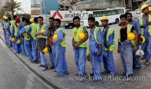 public-authority-for-manpower-denies-transfer-of-agricultural,-shepherd-and-fishing-sectors-visas_kuwait
