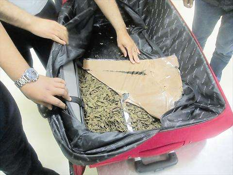 an-indian-expatriate-was-arrested-at-kuwait-airport-for-attempting-to-smuggle-two-kilograms-of-marijuana_kuwait