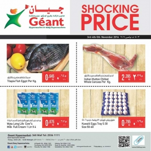 shocking-price in kuwait