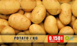 potato in kuwait